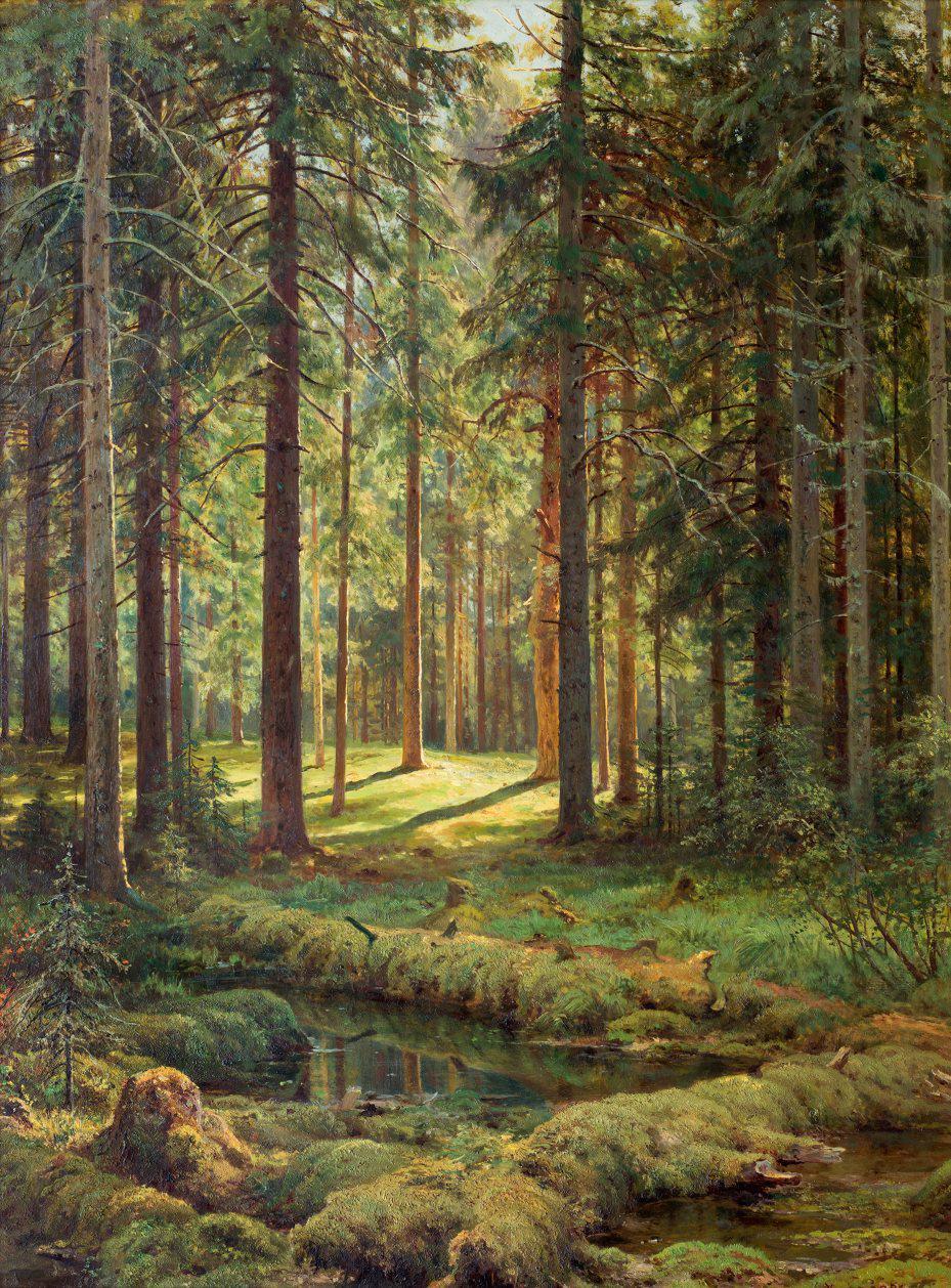 """Описание картины """"Хвойный лес. Солнечный день"""" Ивана Шишкина"""