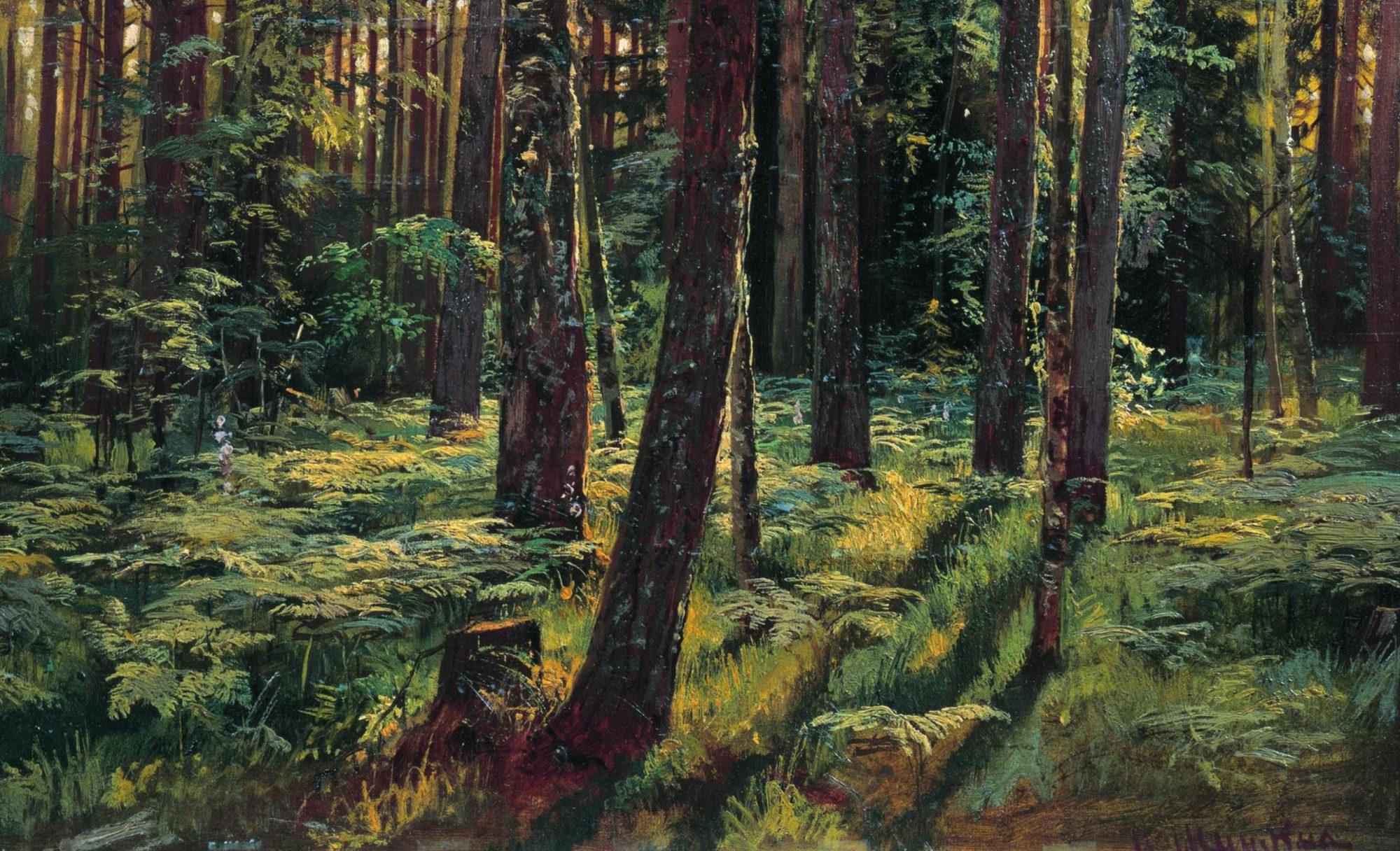 Иван Шишкин, 1883 год, картина «Папоротники в лесу. Сиверская».